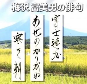 プレバト梅沢冨美男俳句